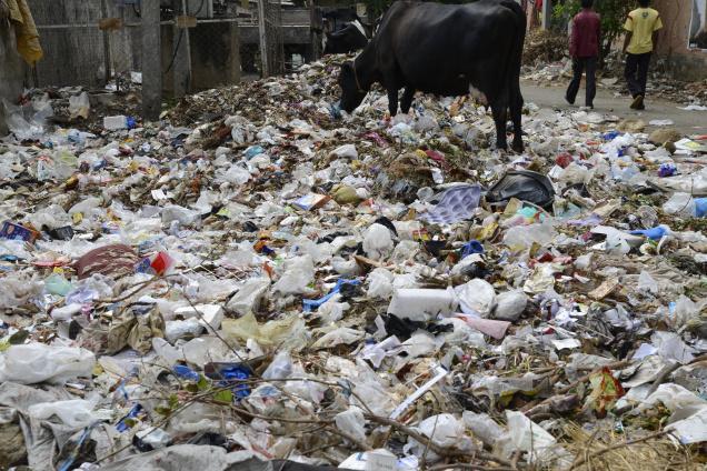 Garbage Bangalore
