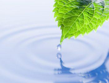 environmental csr