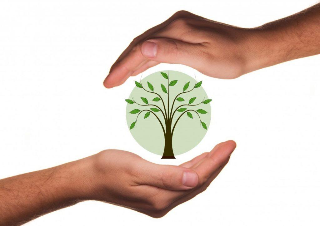 eco friendly businesses