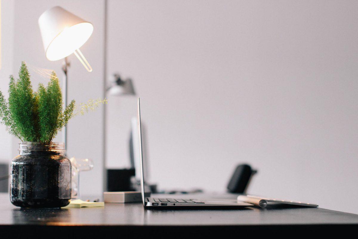 houseplants-office