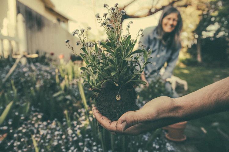 best gardening gifts