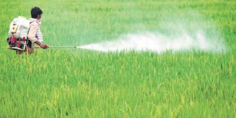 negative impacts of pesticides