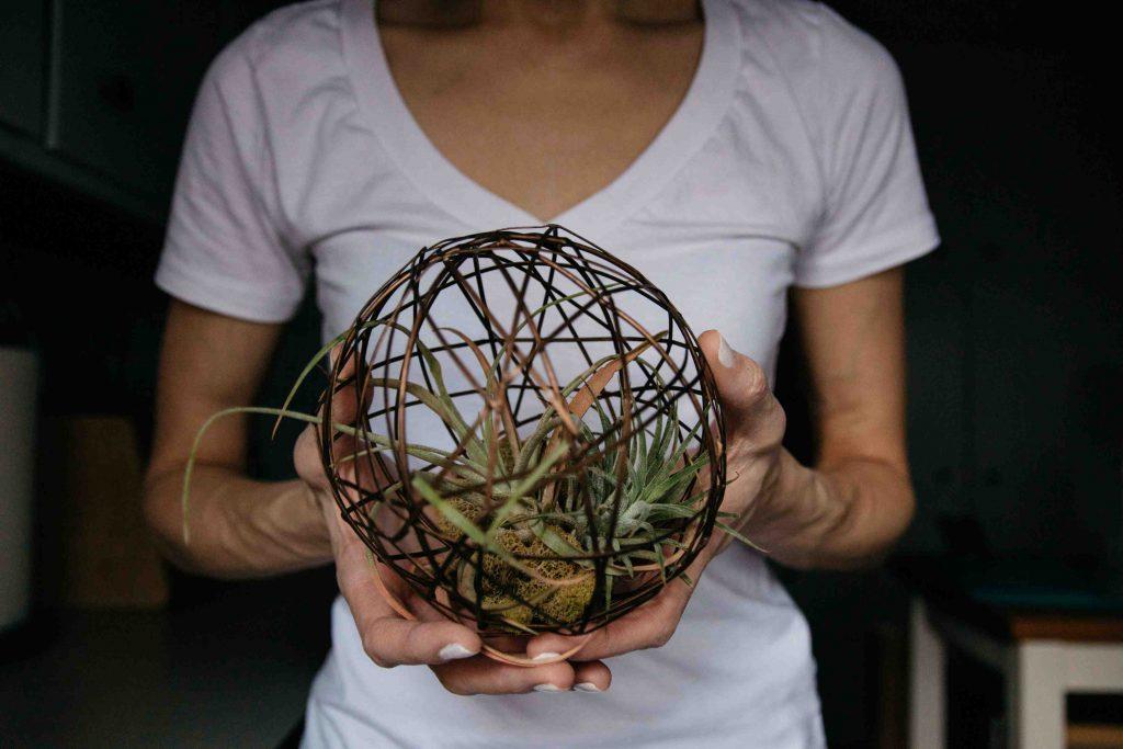 plant-holder-birthday-gift
