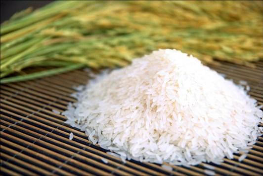 jasmine-rice